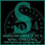 S Challenge  Letter